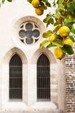中世纪修道院庭院 免版税库存图片