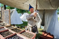 中世纪历史的节日 免版税库存图片