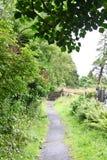 中世纪县坟园, Glendalough,县威克洛,爱尔兰 库存照片
