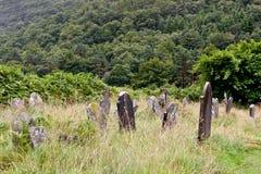 中世纪县坟园, Glendalough,县威克洛,爱尔兰 免版税库存照片