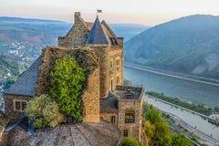 中世纪城堡和一棵树在莱茵谷 免版税库存图片
