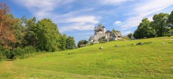 中世纪城堡的风景看法在博博利采村庄 波兰 库存照片