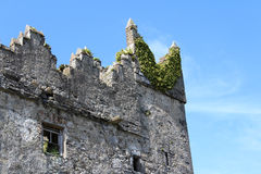 中世纪城堡,废墟, Howth,都伯林海湾,爱尔兰 免版税库存照片