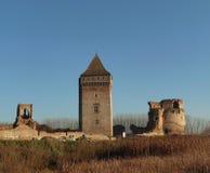 中世纪堡垒废墟在塞尔维亚 库存图片
