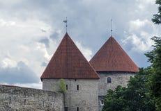 中世纪塔和墙壁在塔林 库存照片