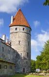 中世纪塔-一部分的城市墙壁 爱沙尼亚塔林 库存图片