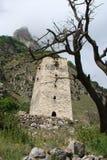 中世纪塔 图库摄影