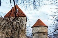 中世纪墙壁和塔在老塔林市 免版税库存图片