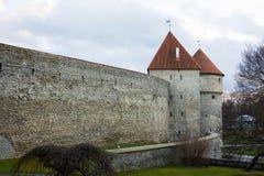 中世纪墙壁和塔在老塔林市 图库摄影
