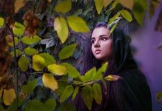 中世纪女孩美丽的长的头发 库存图片