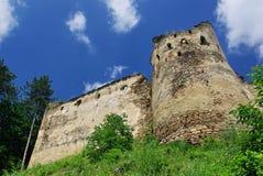 中世纪废墟 免版税图库摄影