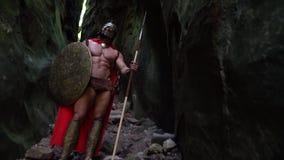 中世纪战士在森林