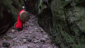 中世纪战士在森林 股票录像
