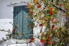 中世纪房子,扎金索斯州海岛的窗口有花的 免版税库存图片