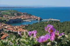 中世纪村庄科利乌尔地中海法国 库存图片