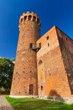 中世纪条顿人城堡在波兰 库存照片