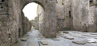 中世纪爱尔兰修道院废墟 库存照片