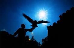 中世纪老鹰的猎人 免版税库存照片