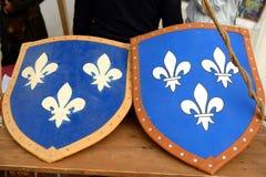 中世纪骑士的盾的重建 免版税库存照片