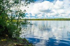 中午、草、树、天空和云彩的卡累利阿人的湖 免版税库存照片