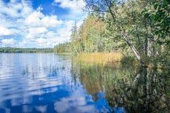 中午、草、树、天空和云彩的2卡累利阿人的湖 免版税库存照片