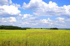 中午在6月 浩瀚 空间 领域和小灌木林的美丽的景色在一个晴天 免版税图库摄影