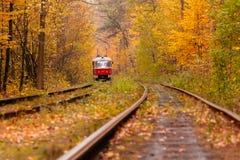 中去一辆奇怪的电车的秋天森林在 免版税库存图片