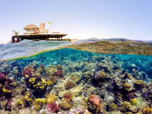 水中和表面分裂视图在热带海 库存图片