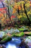 中国东北部没人谷美好的秋天风景 库存照片