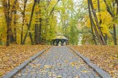 中国亭子在秋天公园 库存图片