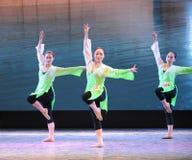 中国人功夫这全国舞蹈训练 免版税库存照片