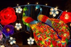 中国人灯节新年新年中国孔雀灯笼 免版税库存图片