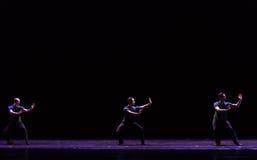 中国人Kung傅古典芭蕾` Austen汇集` 免版税库存照片