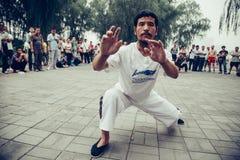 中国人Wushu (功夫)表现 免版税库存图片