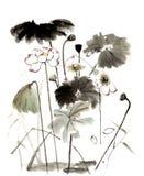 中国传统卓越的华美的装饰手画墨水水百合 免版税库存照片