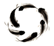 中国传统卓越的华美的装饰手画墨水鲤鱼 免版税库存照片