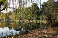 中国公园在Xihu湖中国附近的杭州 免版税库存图片