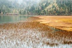 中国冬天风景 免版税库存照片