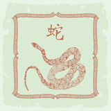中国占星符号蛇 免版税图库摄影