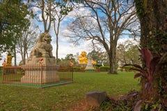 中国古典Buddah和石狮子在寺庙 库存图片
