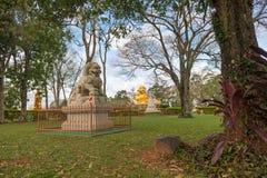 中国古典Buddah和石狮子在寺庙 库存照片