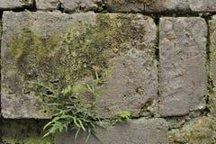 中国古老墙壁 免版税图库摄影