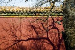 中国古老建筑学寺庙 免版税图库摄影