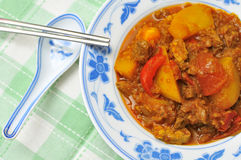 中国咖喱辣样式素食主义者 库存图片