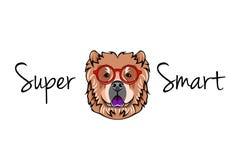 中国咸菜狗怪杰 在聪明的玻璃的狗 超级聪明的题字 向量文件.eps是可用的 皇族释放例证