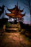 中国塔庭院大厦寺庙斯图加特夜间Glowin 免版税图库摄影