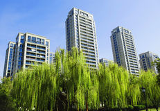 中国大厦 免版税库存图片