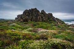 中国岩石,看见从17英里驱动,在Pebble海滩 免版税库存图片