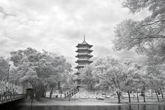 中国庭院塔 免版税库存图片