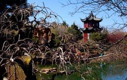 中国庭院 库存照片